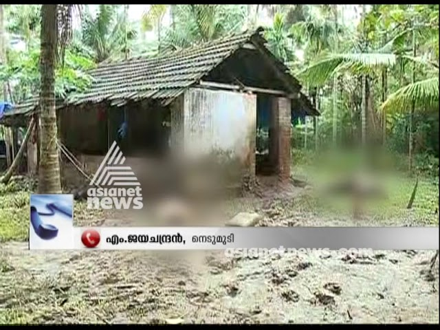 Pets and domestic animals dies in Kuttanad