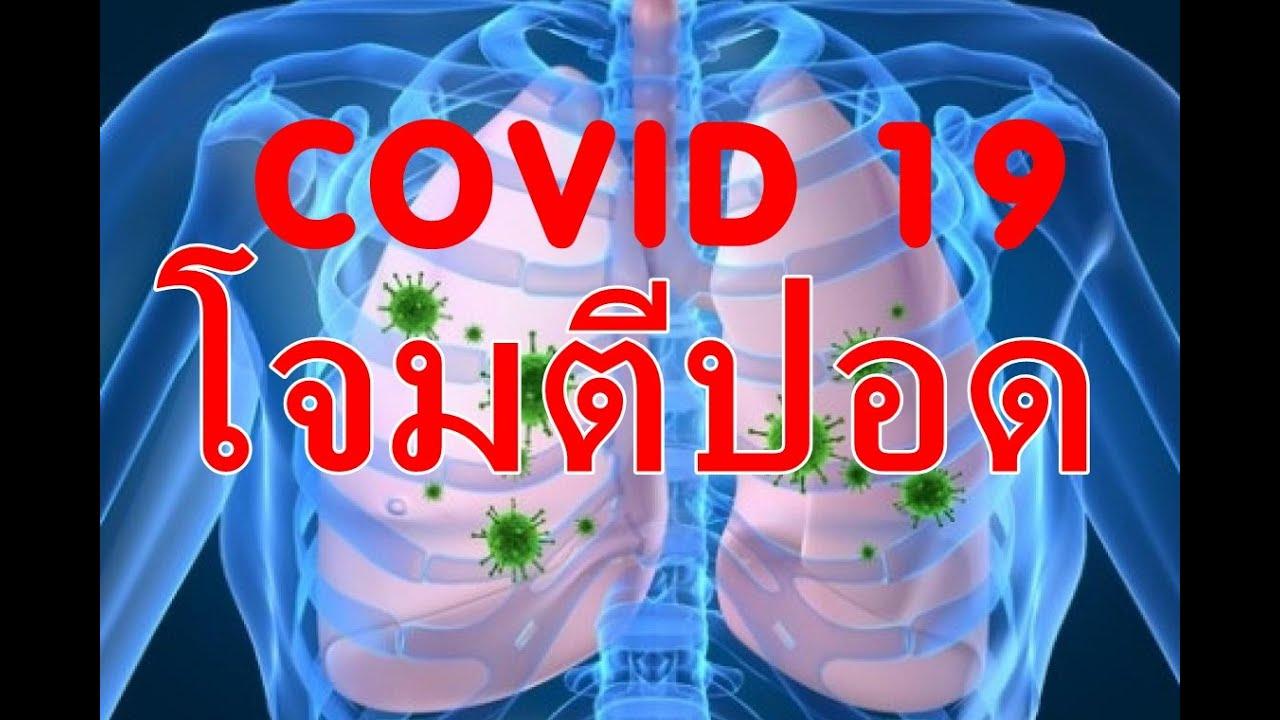 C#1โควิด19 กับการป้องกันปอดถูกทำลาย