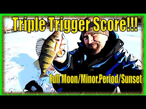 Triple Trigger Score! Timing The Calender & Solunar Tables For The Panfish Ice Fishing