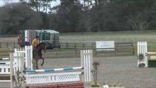 Horse Jumps PVCJUMPS.COM Course Hunter Jumper David Karen O