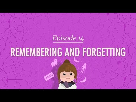 Видео Remembering and forgetting essay