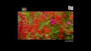 21st of February Ekusher Song