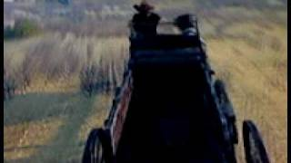 Prairie Surfin With a Stagecoach-Red Dead Redemption
