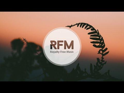 Roman Müller - Easy Life (No Copyright Music)