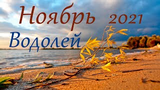 Водолей Ноябрь 2021 Таро прогноз