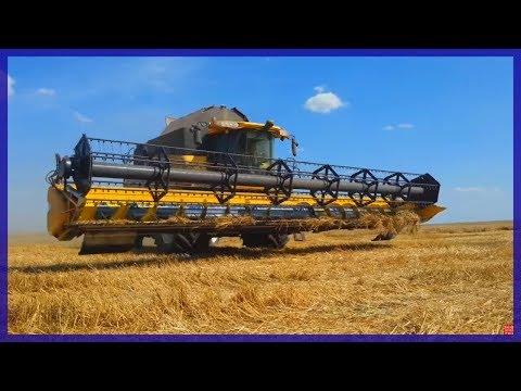 Уборка Пшеницы Импортной Техникой . Урожай 2014год.