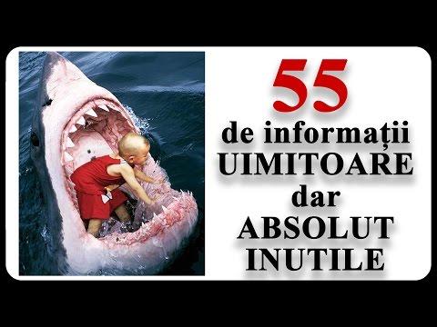 55 de informații UIMITOARE dar ABSOLUT INUTILE