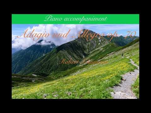 Adagio Und Allegro Op.70 Piano Accompaniment/Robert Schumann