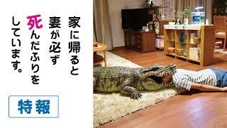 公開日:2018年6月8日全国ロードショー 出演:榮倉奈々 安田顕 大谷亮平...