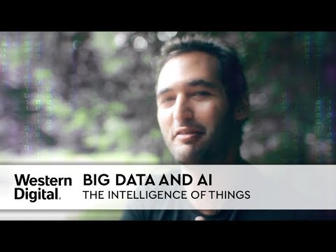 IoT + AI = the Intelligence of Things | Data Makes Possible with Jason Silva