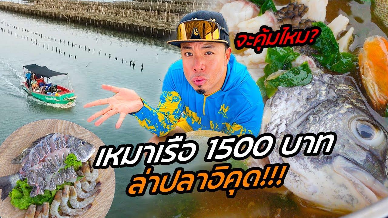Download เราจะรวย!! เหมาเรือ 1,500 ล่าปลาอีคุด ทำชาบูกลางทะเล!!! [หัวครัวทัวร์ริ่ง] EP.141