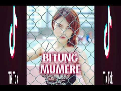DJ BASS BITUNG MAUMERE 2018