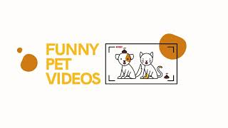 Funniest Pet Clips, Bloopers & Moments Caught On Tape 2018 ...