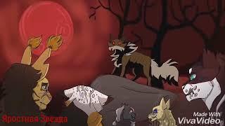 Коты - Воители Сумрачный лес - Люди зомби