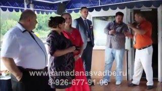 Ведущий на свадьбу, тамада на свадьбу, свадебный ведущий, Люберцы, Домодедово, Одинцово, Раменское