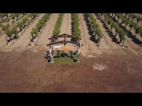 Moravia Wines Wedding Venue Fresno, CA