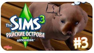 The Sims 3 : Райские Острова / Как приручить бездомную собаку?