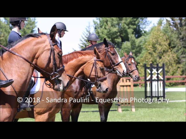 The Darren Graziano Clinic 3 day Photo Compilation by Sandra Paulini