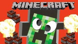 Minecraft : That 'Stupid P…