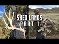 Shed Lands Part 1 (FIRST SIDE TO 220+ INCH SET, AWESOME DAY SHED HUNTING 2017)