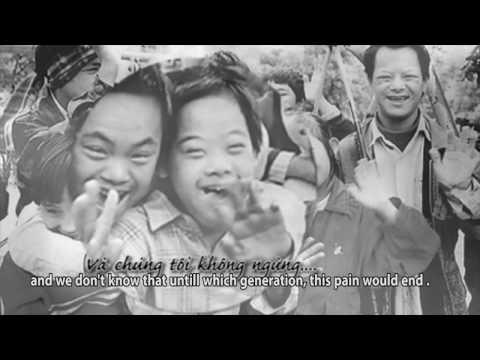 VTV: Phóng Sự Về Nạn Nhân Chất độc Da Cam Việt Nam