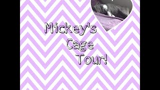 Bunny Cage Tour!!