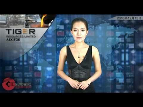 Waratah Gold (ASX:WGO): ABN Newswire Australian Report Dec 15, 2010