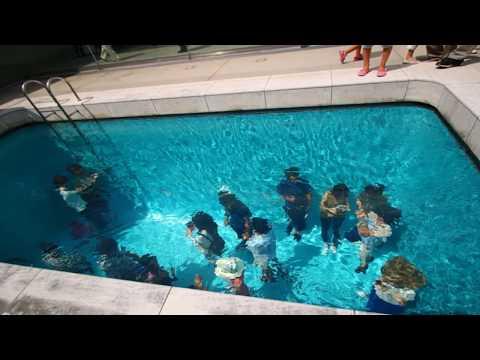 las 6 piscinas m s extra as que no creer s que existen