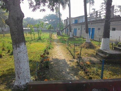 Urban Vertical Farming in TONA Organic Farm - MD-Uday Bhanu Roy