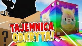TAJEMNICA ODKRYTA! - PIXELMON LUCKY BLOCK /w Diabeuu