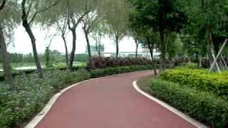 神洲南沙行4....蕉門綠道  30-07-2011...130km