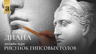 Голова Дианы - Рисунок гипсовых голов | Художник Денис Чернов ~ Онлайн-школа Akademika