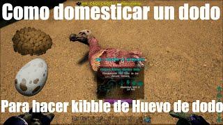Como domesticar un dodo para hacer kibble de huevo de dodo - Ark Survival Evolved Modo Dios