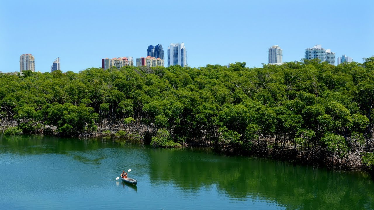 Florida Travel Oleta River State Park Florida S Largest Urban Park