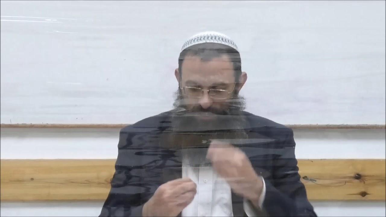 הלכות בישול סימן שיח סעיפים ד-ה. הרב אריאל אלקובי שליט''א