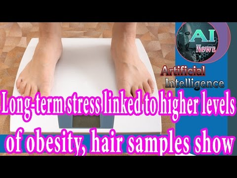 Artificial Intelligence News - Long-term stress linked to higher levels of obesity hair samples show