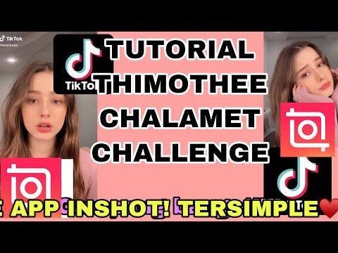 TUTORIAL EDIT TIMMY TREND VIRAL DI TIKTOK PAKE APK INSHOT #part2