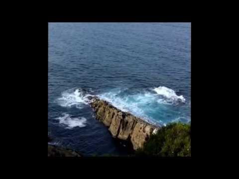 Eden, New South Wales Australia: vlog