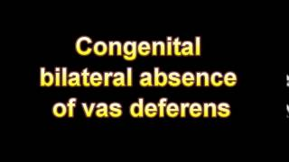 What Is The Definition Of Congenital bilateral absence of vas deferens
