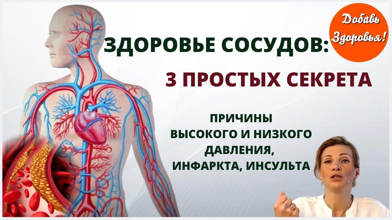 Причины сосудистых заболеваний. 3 секрета здоровья сосудов