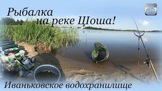 Рыбалка на реке Шоша Иваньковское водохранилище деревня Безбородово Тверская область