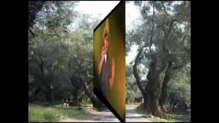 RAICES / ROOTS Quirpa - Ricardo Curbelo El Cóndor