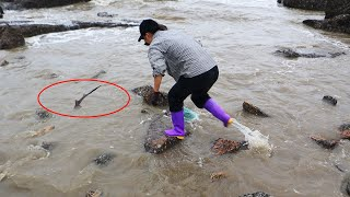 皮皮发现潮水冲进大货,不顾危险就追上去,幸亏这货又大又值钱