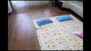 Корейское постельное белье и ковры-матрасы(00:15 корейское постельное белье 02:14 обогреваемый ковер-матрас Домашняя страница: http:--www.youtube.com-user-live2enjoy77..., 2013-06-27T05:34:16.000Z)