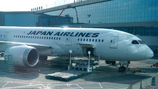 Japan Airlines  B787 'Sky Suite'  Business Class Review + Domodedovo Business Lounge