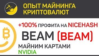 BEAM на NiceHash + 100% профита, майним картами Nvidia   Выпуск 148   Опыт майнинга криптовалют