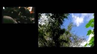 Musique et paysage d'Imbabura en Équateur