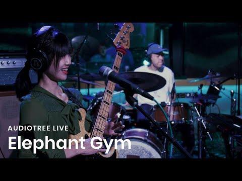 Elephant Gym on Audiotree Live (Full Session)