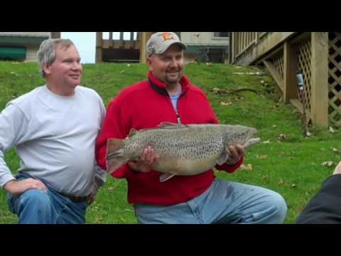 Missouri Record Fish Stories - Brown Trout