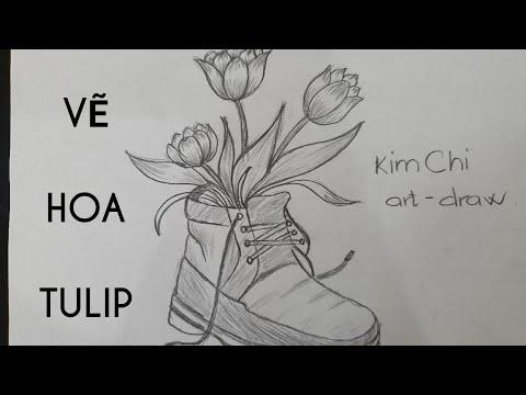 Cách Vẽ Hoa Tulip đơn giản bằng bút chì – How to Draw Tulip Flower with pencil l Kim Chi Art & Draw